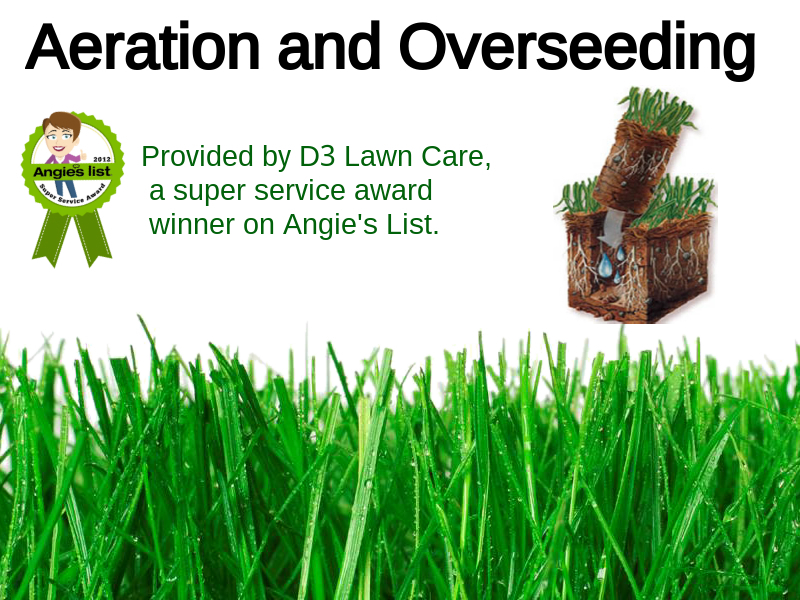 D3_aeration_and_overseeding_logo